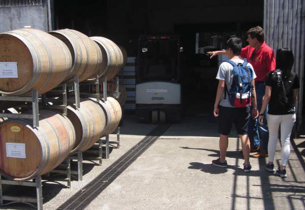 Wine Making Lessons